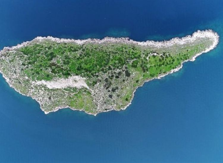 Το δίδυμο... αδερφάκι της Κύπρου βρίσκεται στην Ελλάδα (βίντεο)