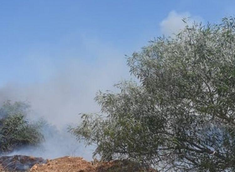 Σε εξέλιξη φωτιά στο Ξυλοφάγου(ΦΩΤΟΣ)