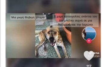 Κακοποίηση σκύλου Αγ. Νάπα: Στρατιώτες δημιούργησαν ένα συγκινητικό βίντεο για τον Μπρούνο