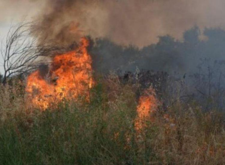 Αγία Νάπα: Πυρκαγιά κατεύκαψε έξι δεκάρια χαμηλής βλάστησης