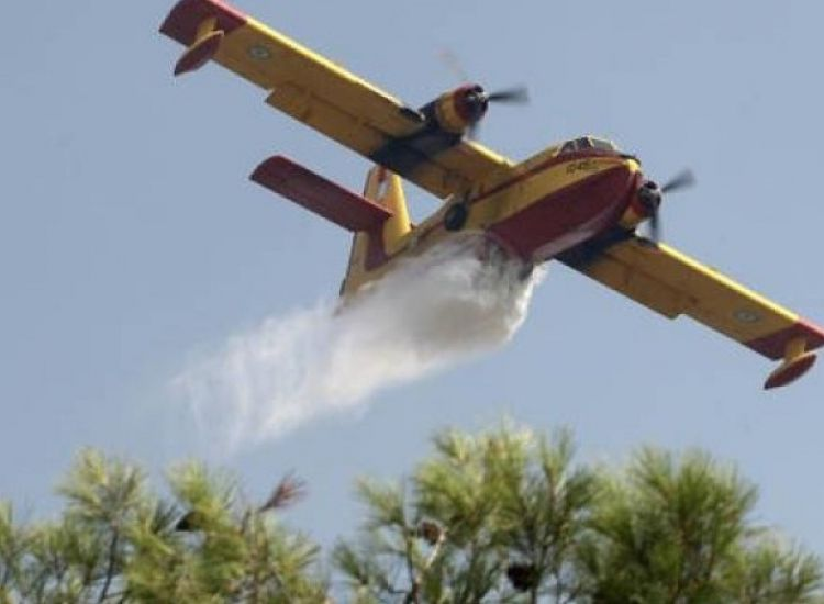 ΤΩΡΑ: Πυρκαγιά στην Αγία Νάπα – Επιχειρούν δυο αεροσκάφη