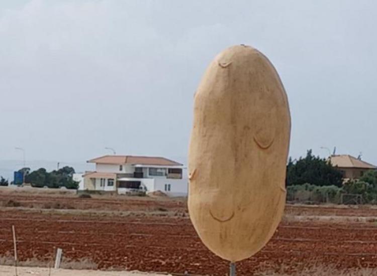 Ξυλοφάγου: €15.000 για το Big Potato Σπούντα - Στόχος το Γκίνες