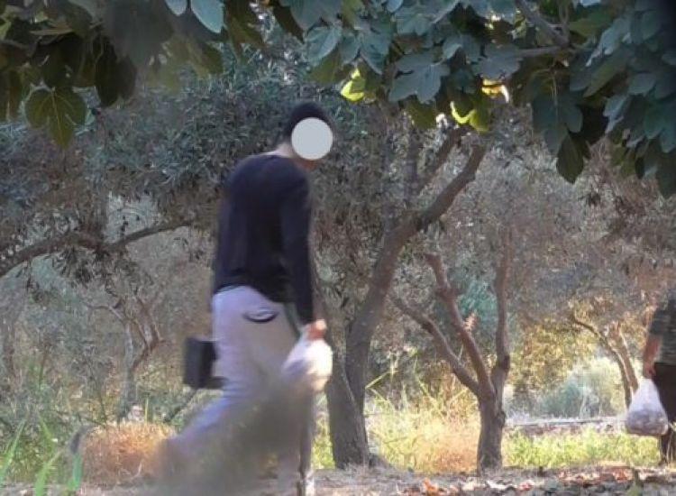 Βίντεο: Πιάστηκαν on-camera να παγιδεύουν αμπελοπούλια – 18 μήνες με αναστολή