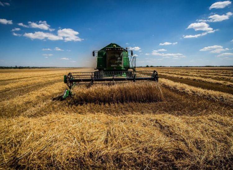 Νέες ρυθμίσεις στο σχέδιο γεωργικής ασφάλισης για καταβολή αποζημιώσεων