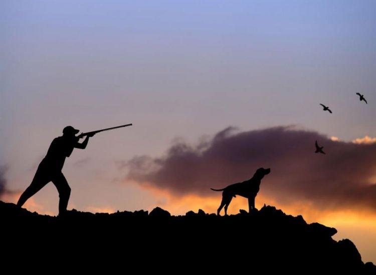 Βαρύ πρόστιμο σε κυνηγό που κυνηγούσε σε απαγορευμένη περίοδο